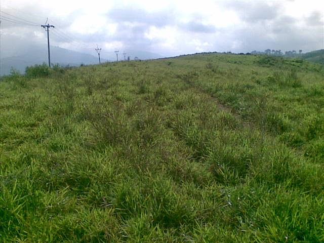 Foto(5380) Di Jual Tanah Murah 96 Ha Lokasi Kawasan Puncak Jual tanah di cipanas jual tanah di puncak