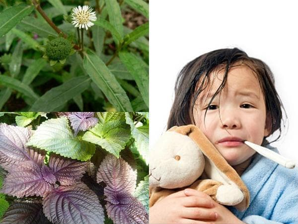 Những việc cần làm giúp con khỏi bệnh khi trẻ bị sốt 3