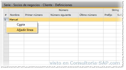 Curso practico de Business One - Consultoria-SAP