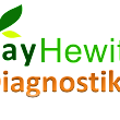 Performance Needs Assessment and Analysis ~ Bay Hewitt Business and Learning Solutions