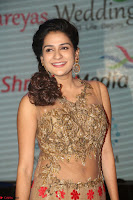 Jenny in brown transparent sleeveless anarkali dress at Shamanthakamani pre release function ~  Exclusive 033.JPG
