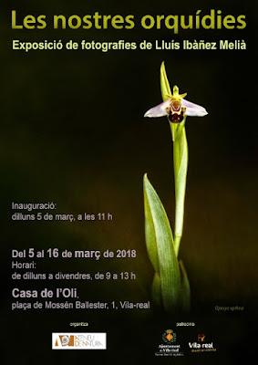 http://ateneudenatura.uji.es/