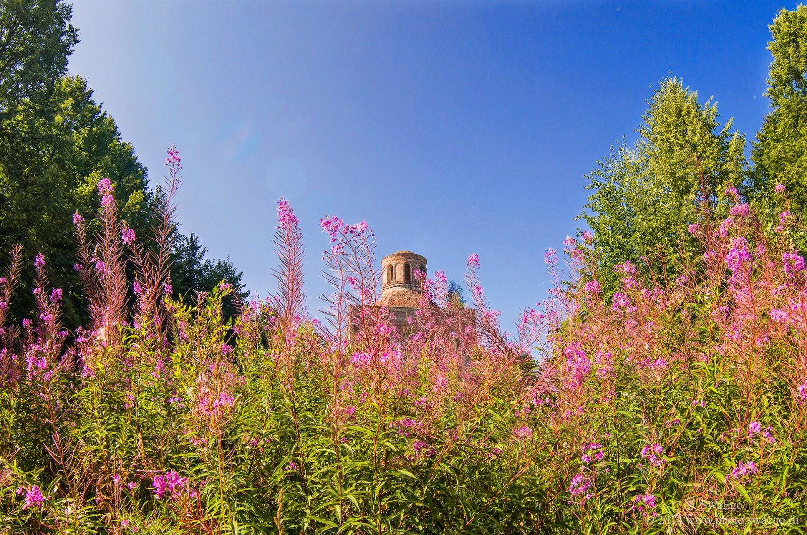 Заброшенная церковь в Вологодской области