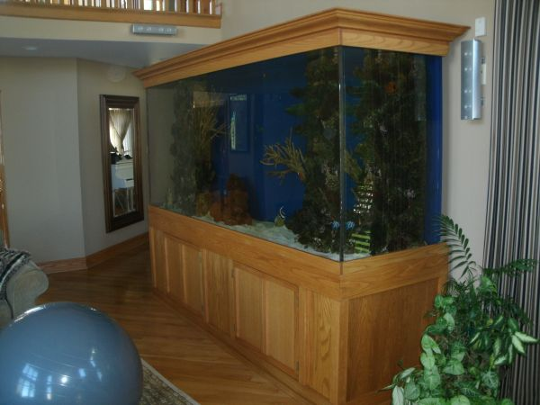 com/fish tanks and equipment/95 gallon 25 x 36 hexagon aquarium combo