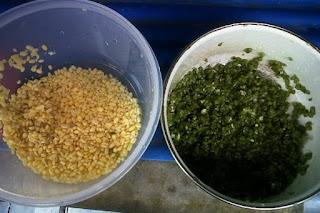 gambar biji kacang hijau tanpa kulit