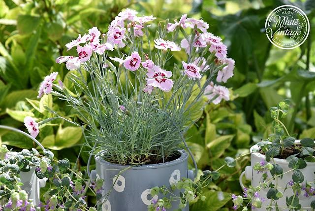 Blumentopf aus Dosen herstellen