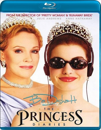 The Princess Diaries 2001 Dual Audio Hindi 480p BluRay 300mb