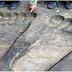 กระจ่าง!! สาเหตุที่ รอยพระพุทธบาทใหญ่ ทั้งที่เท้าพระพุทธเจ้าน่าจะเล็ก ที่แท้เพราะแบบนี้เอง?!!