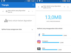 Download Triangle: More Mobile Data O.7.1 APK
