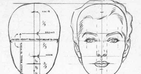 deanza life drawing head