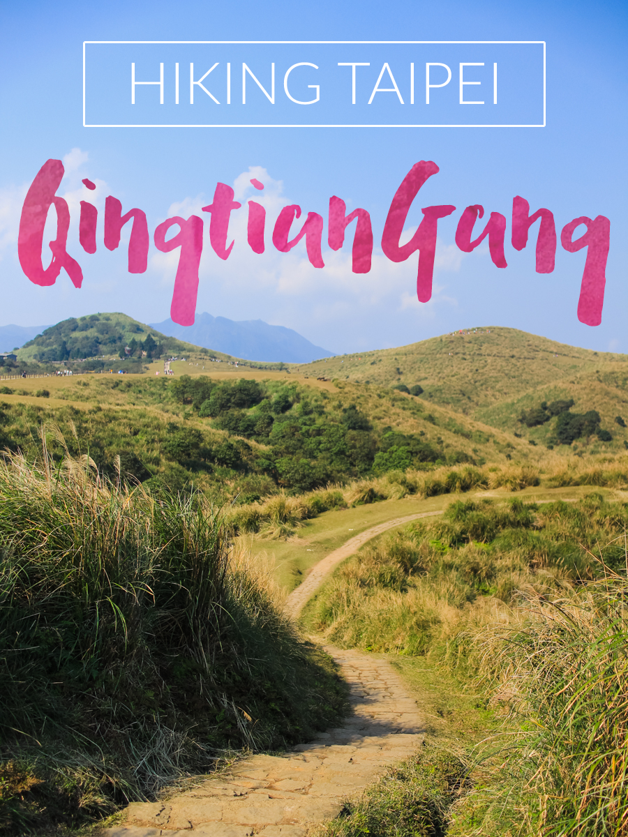 The Qingtiangang Grasslands in Yangmingshan National Park is a a great area for taking a hike, enjoying a picnic, and catching views of the surrounding mountain peaks.