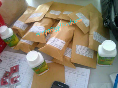 Paket Sampai Obat Peninggi Badan