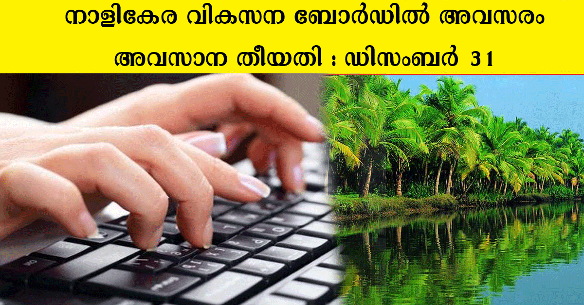 Stenographer vacancy in  Coconut Development Board kerala.
