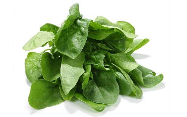 companion plant spinach
