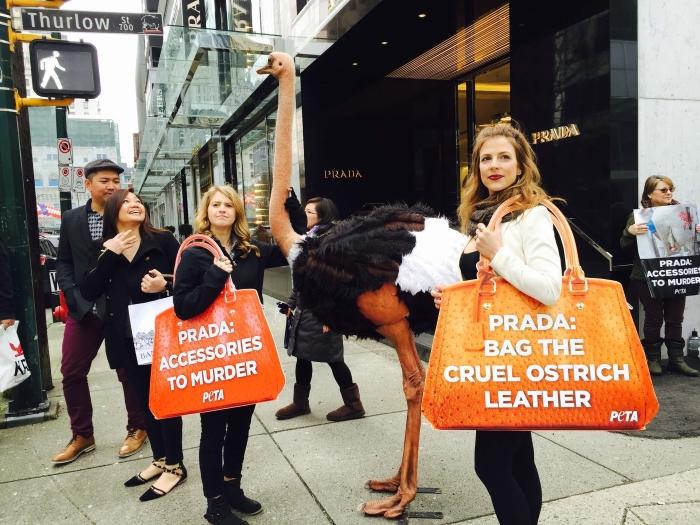 Membros da PETA protestam contra o uso de couro de avestruz em frente a uma loja da Prada