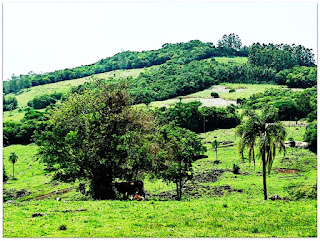 Paisagem Rural nos Caminhos de Santiago, Santo Antônio da Patrulha