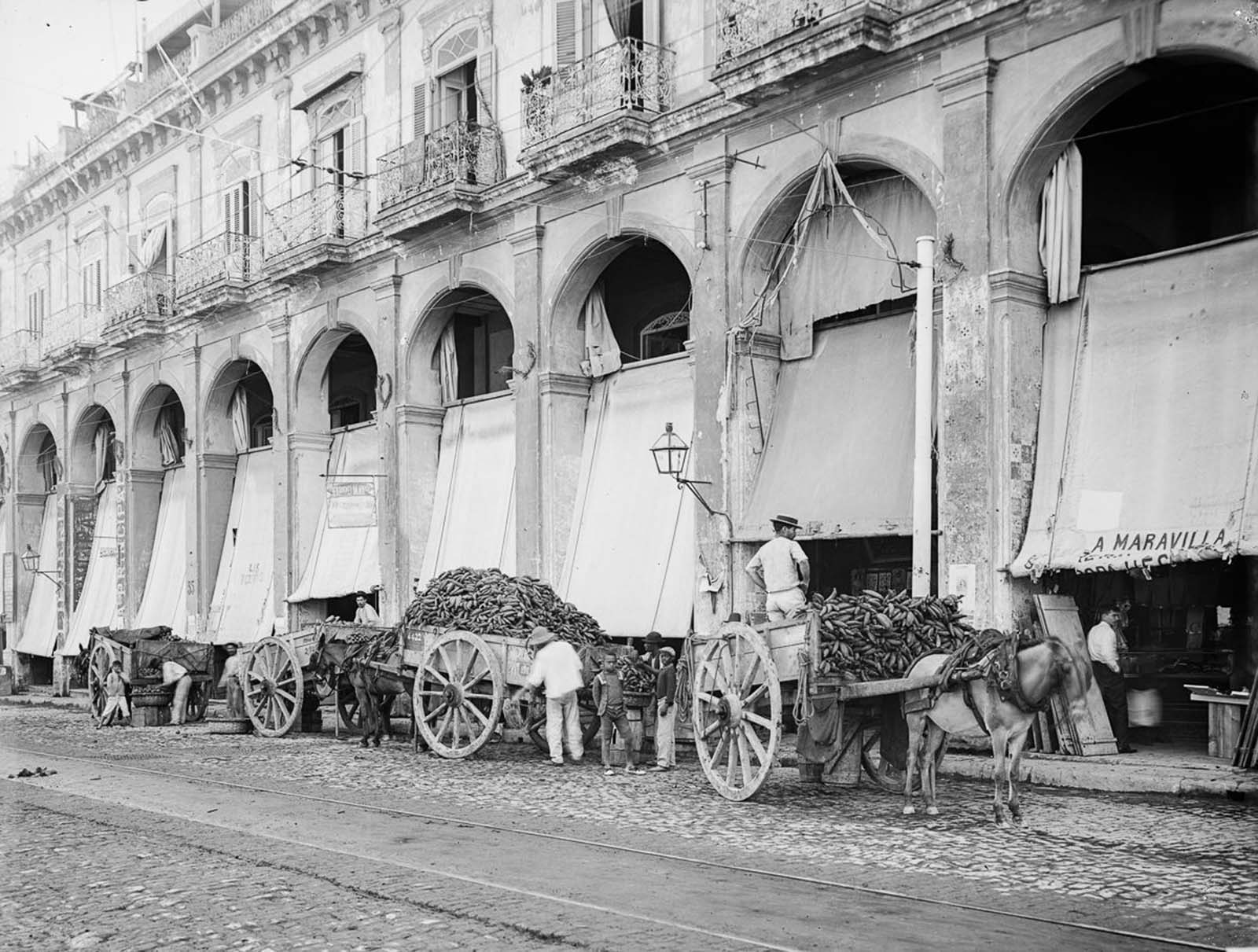 Fruit wagons unload outside a market. 1890.