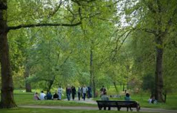 पार्क में घुमने जाएँ