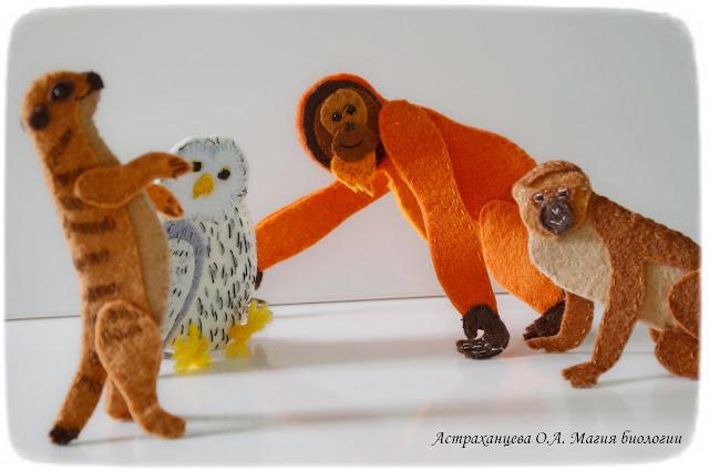palchikovyj-teatr-orangutan-surikat-sova-martyshka
