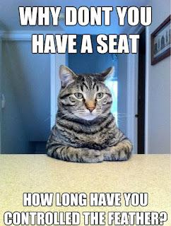 Cat Memes Photos