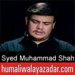 https://www.humaliwalyazadar.com/2018/09/syed-muhammad-shah-nohay-2019.html