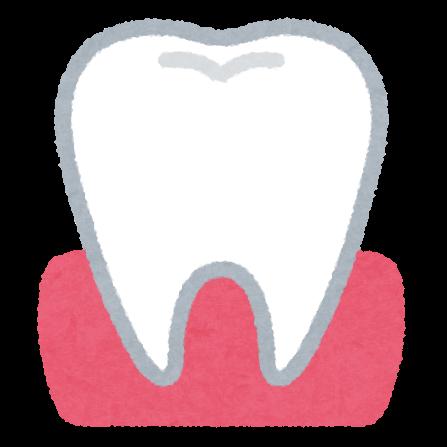 歯と歯茎のイラスト かわいいフリー素材集 いらすとや