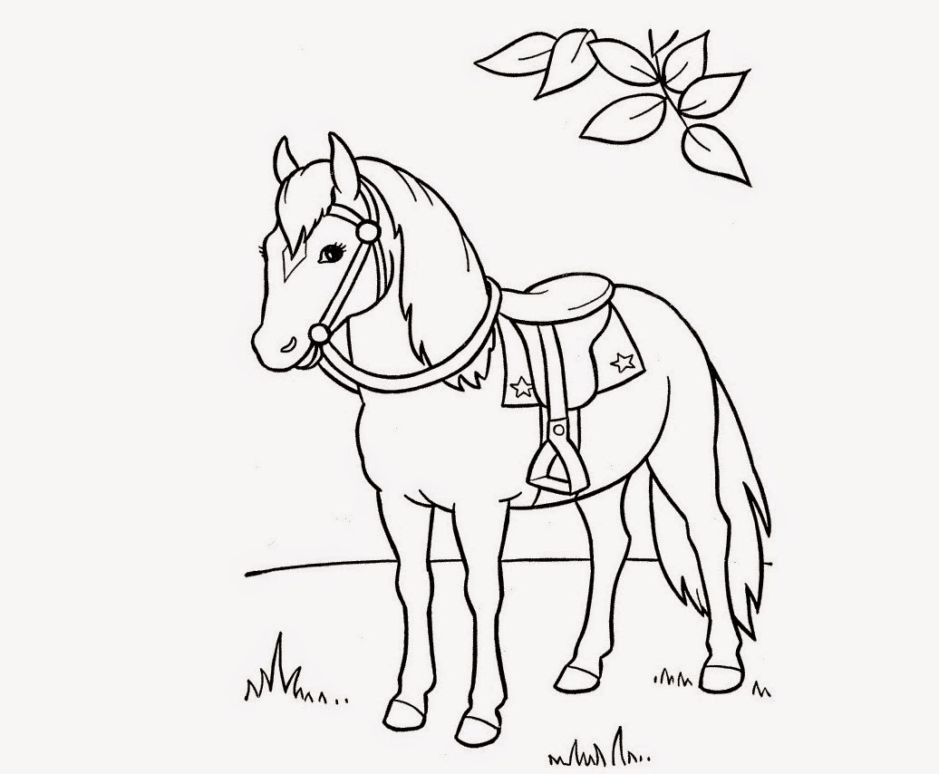 Colour Drawing Free HD Wallpapers: Horse For Kids Coloring