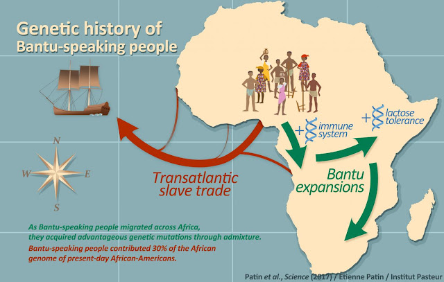 Genetic analysis reveals migration history of early Bantu speakers