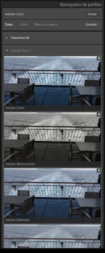 Panel Básicos -  Perfil