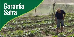 Na PB, 34 mil agricultores receberão o Garantia Safra