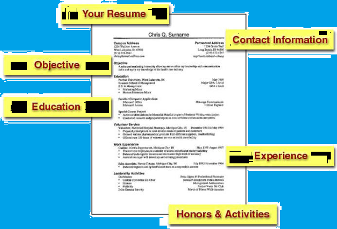 resume format for freshers resume samples for freshers