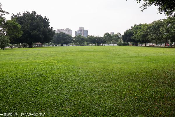 台中北屯|廍子公園|黃花風鈴木|滑板場|巨人腳印公園|綠籬迷宮|生態池|拱橋