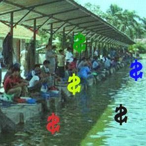 Dahulu mancing hanya dilakukan oleh nelayan di laut sembagai mata pencarian atau sumber r Memancing Antara Hobi Atau Bisnis