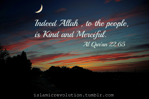 Allah Quotes - Indeed Allah, to the people, is Kind and Merciful