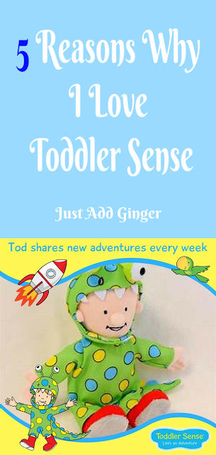 image box with text that reads ' 5 Reasons Why I Love Toddler Sense'