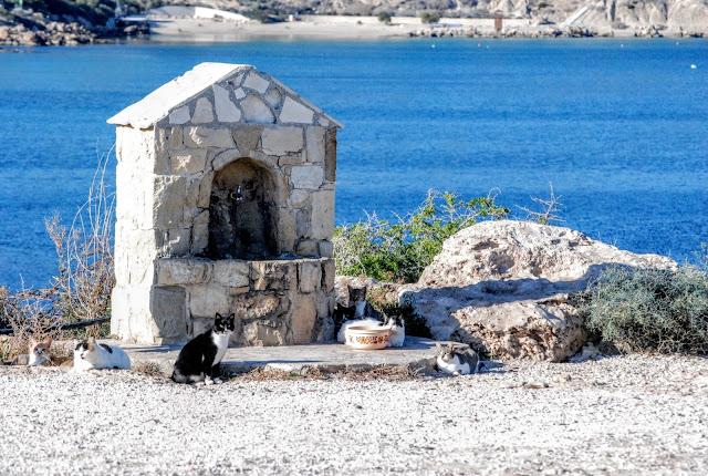 Αγία Νάπα (Ayia Napa, Ajia Napa, Agia Napa), Κύπρου (Kıbrıs, Cyprus, Cypr)