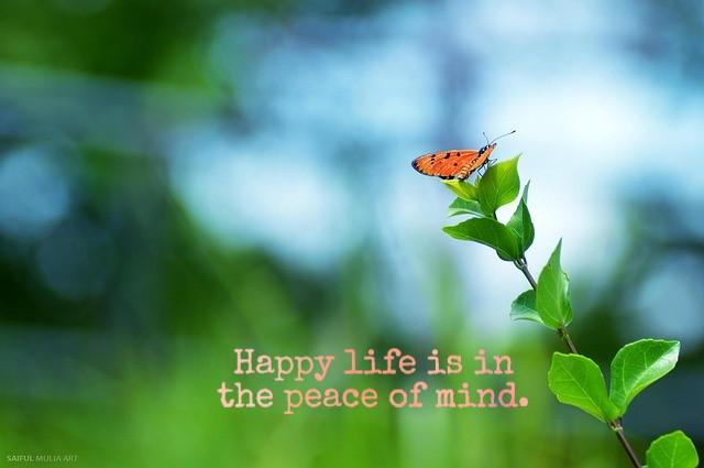Happy life status :
