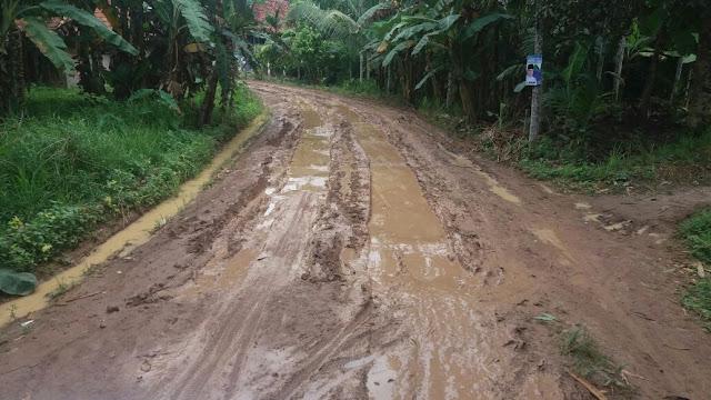 "Jalan JukDadak Rusak, Duta ; Kalau Begini ""Merusak OKI Dari Desa"