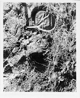 UFO Landing Site Photo at Gwinner, N.D. (pg 4) 10-26-1966