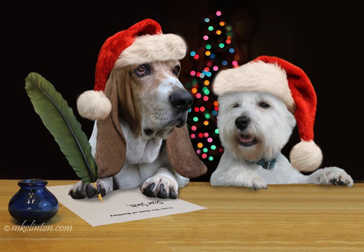 Two dogs writing Santa ©mkclinton.com