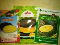 tanaman semangka, menanam semangka, budidaya semangka, jual benih, lmga agro