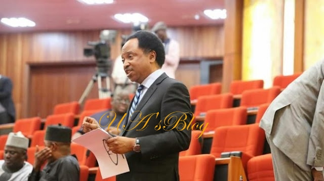 2019: Why NASS should not reconvene in September – Shehu Sani, Abaribe, others