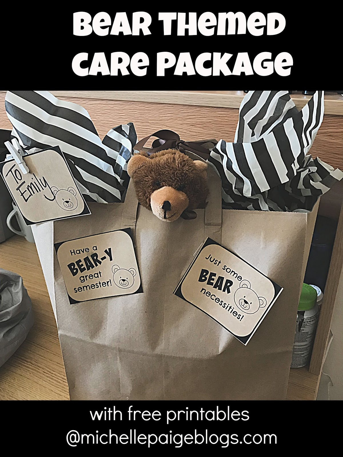 michelle paige blogs college care package bear pun themed