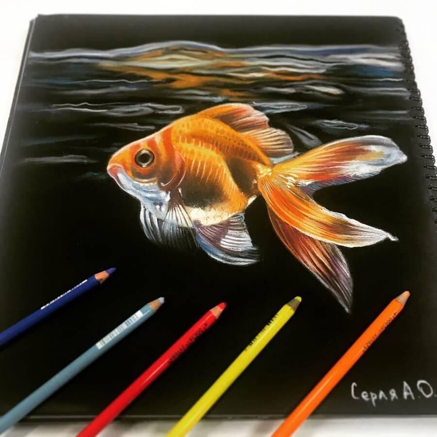 10-Goldfish-Anastasia-Gray-www-designstack-co