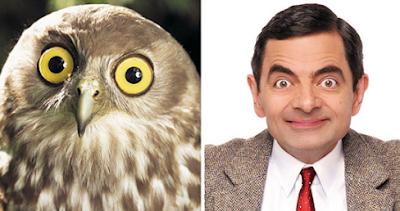 Rowan Atkinson Mirip Hewan