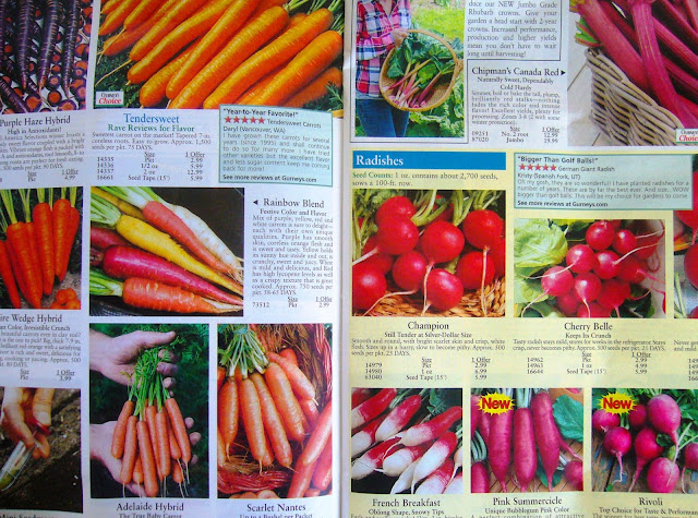 Ordering Seed Catalogs for Square Foot Gardening