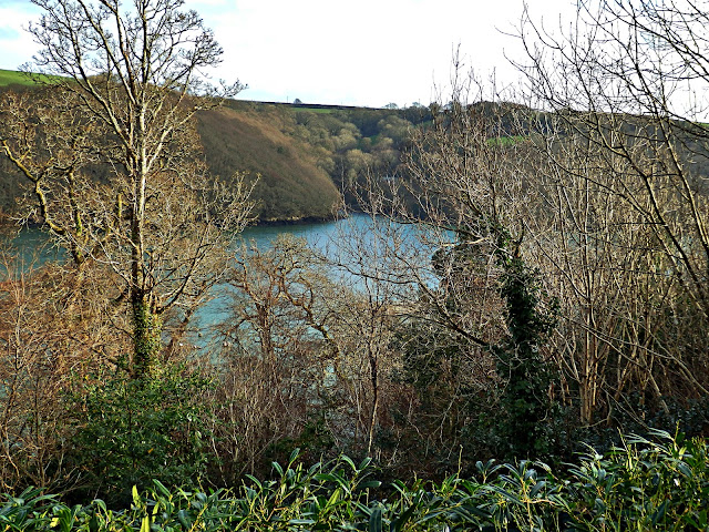 Rover Fal looking from Trelissick House, Cornwall