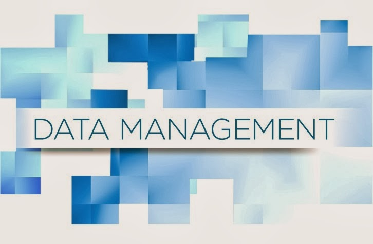 Master data management - Verdantis