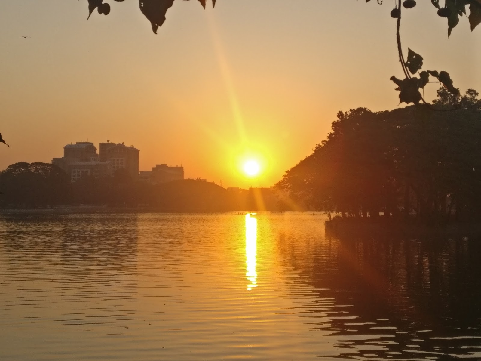 Halasuru Lake By the Morning - A Solace in the Urban Chaos
