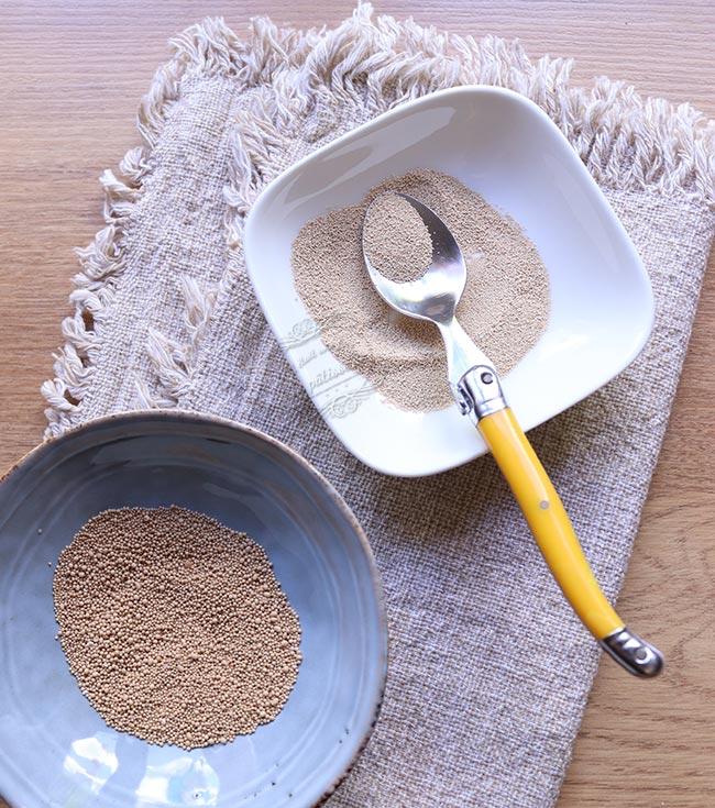 remplacer levure fraiche par levure sèche